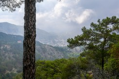 troodos mt-8